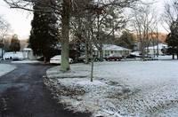 Snowyhome_1