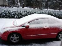 Snowysassy